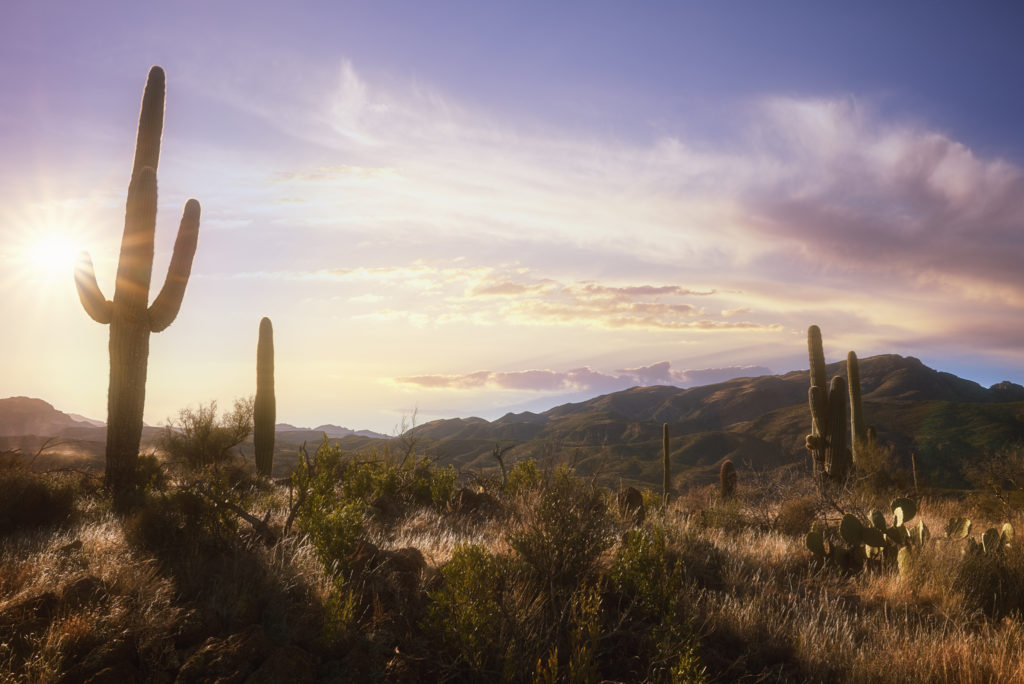 Arizona-Landscape-Photography_31